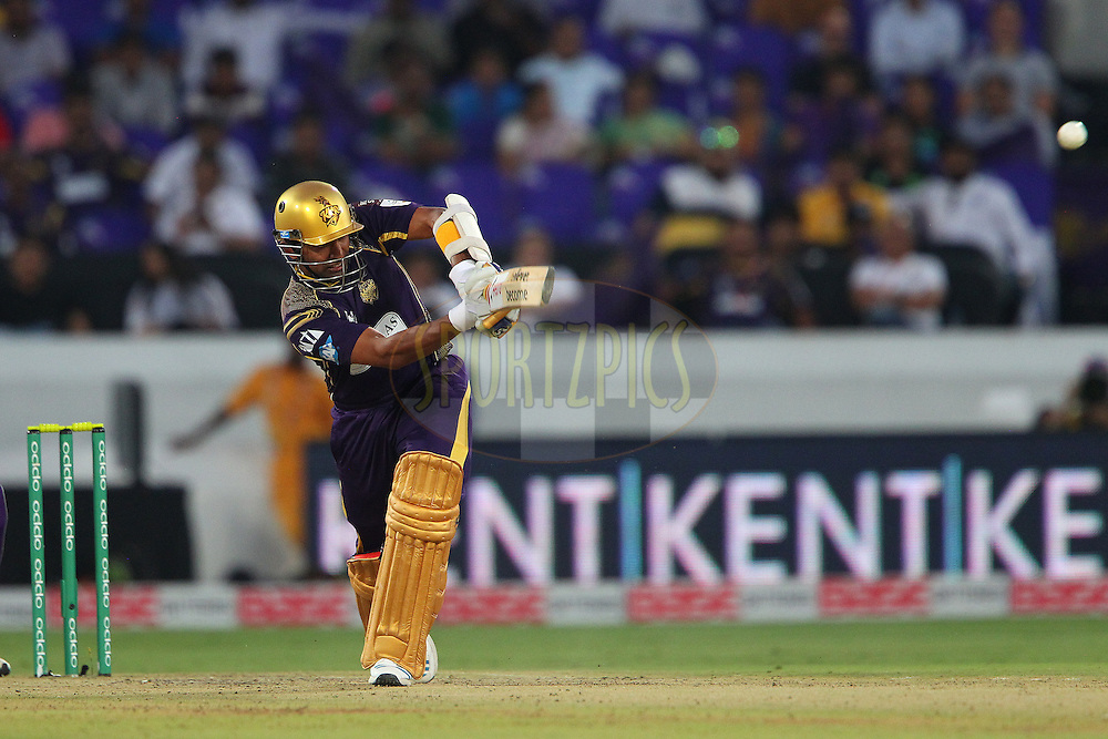 Robin UTHAPPA of the Kolkata Knight Riders  during the first semi final match of the Oppo Champions League Twenty20 between the Kolkata Knight Riders and the Hobart Hurricanes held at the Rajiv Gandhi Cricket Stadium, Hyderabad, India on the 2nd October 2014<br /> <br /> Photo by:  Ron Gaunt / Sportzpics/ CLT20<br /> <br /> <br /> Image use is subject to the terms and conditions as laid out by the BCCI/ CLT20.  The terms and conditions can be downloaded here:<br /> <br /> http://sportzpics.photoshelter.com/gallery/CLT20-Image-Terms-and-Conditions-2014/G0000IfNJn535VPU/C0000QhhKadWcjYs