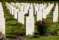 Some of the 286 German Burials in Cannock Chase War Cemetery which also contains 97 Commonwealth burials of the First World War, most of them New Zealanders, and  three burials of the Second World War.<br /> <br /> 17 September 2020<br /> <br /> www.pauldaviddrabble.co.uk<br /> All Images Copyright Paul David Drabble - <br /> All rights Reserved - <br /> Moral Rights Asserted -