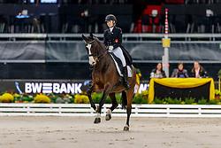 CICHOS Hannah (GER), Dias de Rio<br /> Stuttgart - German Masters 2019<br /> PREIS DER LISELOTT SCHINDLING STIFTUNG ZUR FÖRDERUNG DES DRESSURREITSPORTS<br /> Piaff Förderpreis Finale<br /> Nat. Dressurprüfung Kl. S***<br /> Grand Prix<br /> 15. November 2019<br /> © www.sportfotos-lafrentz.de/Stefan Lafrentz