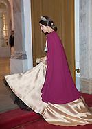 Copenhagen , 01-01-2017<br /> <br /> New Years Levee at Amalienborgpalace with Queen Margrethe and Prince Henrik, Crownprince Frederik and Crownprincess Mary, Prince Joachim and Princess Marie.<br /> <br /> <br /> <br /> <br /> COPYRIGHT ROYALPORTRAITS EUROPE/ BERNARD RUEBSAMEN
