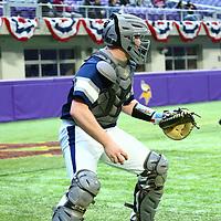 Baseball: Augsburg University Auggies vs. University of Wisconsin, Stout Blue Devils