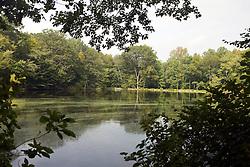 The Pond, Weir Farm National Historic Site, former home of painter J. Alden Weir, Branchville, Connecticut.