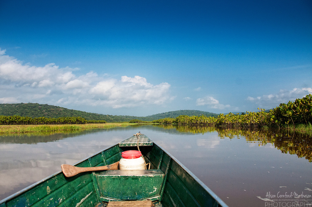 Travelling by boat in the Réserve Naturelle des Marais de Kaw-Roura, France's second largest nature reserve and a heaven for bird-watchers and nature lovers.