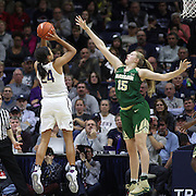 STORRS, CONNECTICUT- NOVEMBER 17: Napheesa Collier #24 of the UConn Huskies shoots over Lauren Cox #15 of the Baylor Bears during the UConn Huskies Vs Baylor Bears NCAA Women's Basketball game at Gampel Pavilion, on November 17th, 2016 in Storrs, Connecticut. (Photo by Tim Clayton/Corbis via Getty Images)
