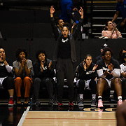 24 February 2018: The San Diego State women's basketball team closes out it's home schedule of the regular season Saturday afternoon against San Jose State. The San Diego State bench celebrates after a made three point shot. The Aztecs beat the Spartans 85-78 at Viejas Arena.<br /> More game action at sdsuaztecphotos.com