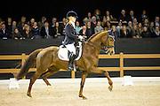 Suzanne van de Ven - Vdv D' Avicci<br /> Indoor Brabant 2016<br /> © DigiShots