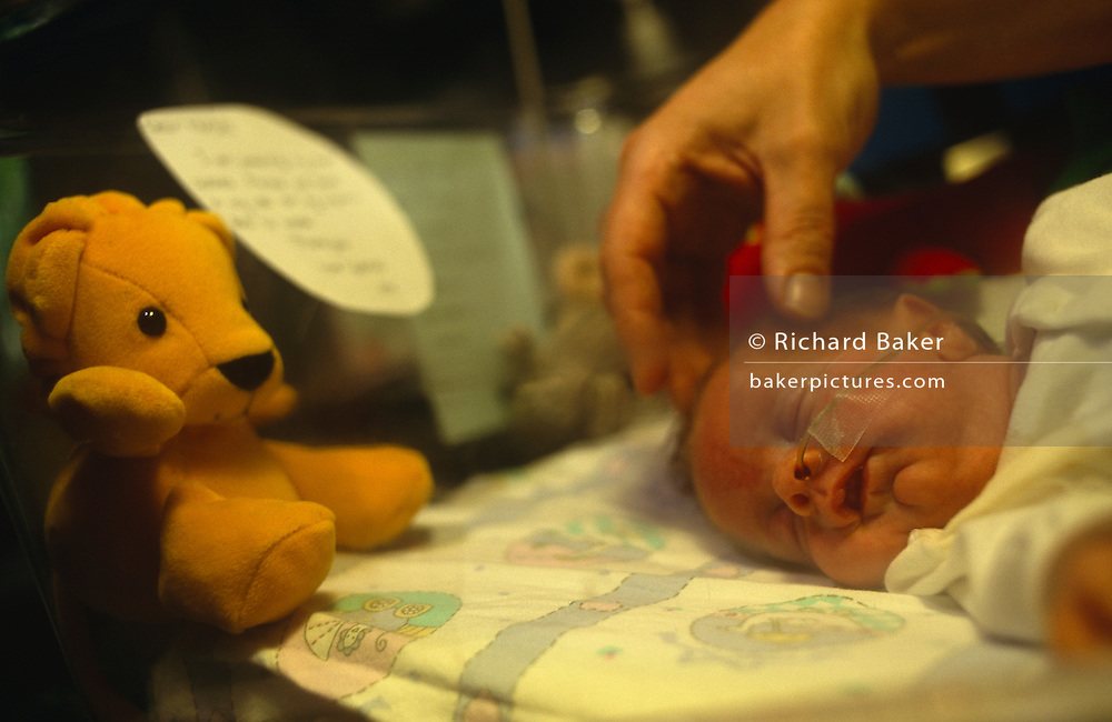 With a large hand from her worried mother gently caressing her head, a tiny premature new-born born baby sleeps on its side with an oxygen tube in its nose, while gathering strength in her incubator at the Royal London Hospital, Whitechapel, London, England. In her warm cot, a toy bear looks on in the corner and a poem writen on a card from the baby's parents has been attached to the plastic wall. It is a tender moment of hope, that this precious young human life can continue to grow into adulthood and be loved by all. The Royal London Hospital is one of London's oldest, having been founded in 1740 and is a major teaching hospital in Whitechapel, East London..