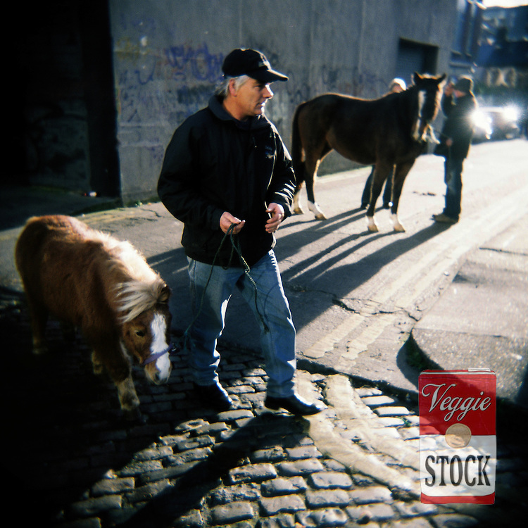 A horse seller at Smithfield Horse Market, Dublin, Ireland, November 2008.