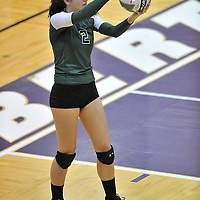 11.4.2010 Elyria Catholic Volleyball Regional Semifinal