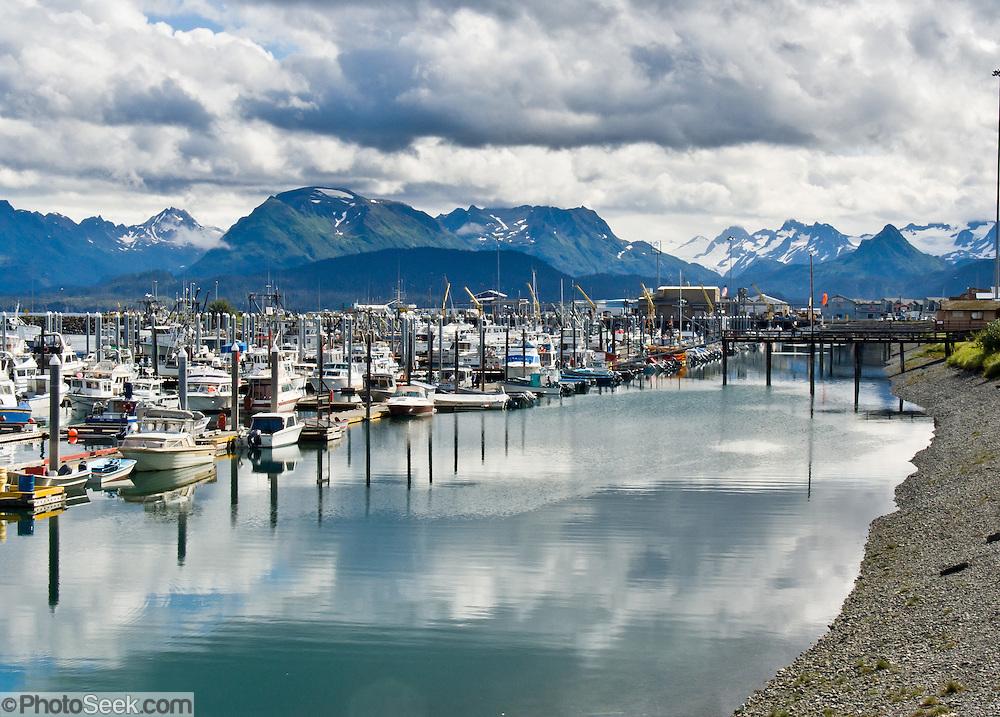 Homer Small Boat Harbor, Kachemak Bay, Homer, Alaska, USA.