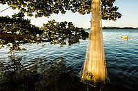 Rede de pesca secando ao sol na Praia do Ribeirão da Ilha. Florianópolis, Santa Catarina, Brasil. / Fishing net drying at the sun at Ribeirao da Ilha Beach. Florianopolis, Santa Catarina, Brazil.