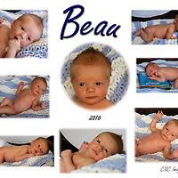 Baby Beau West Newborn 2016