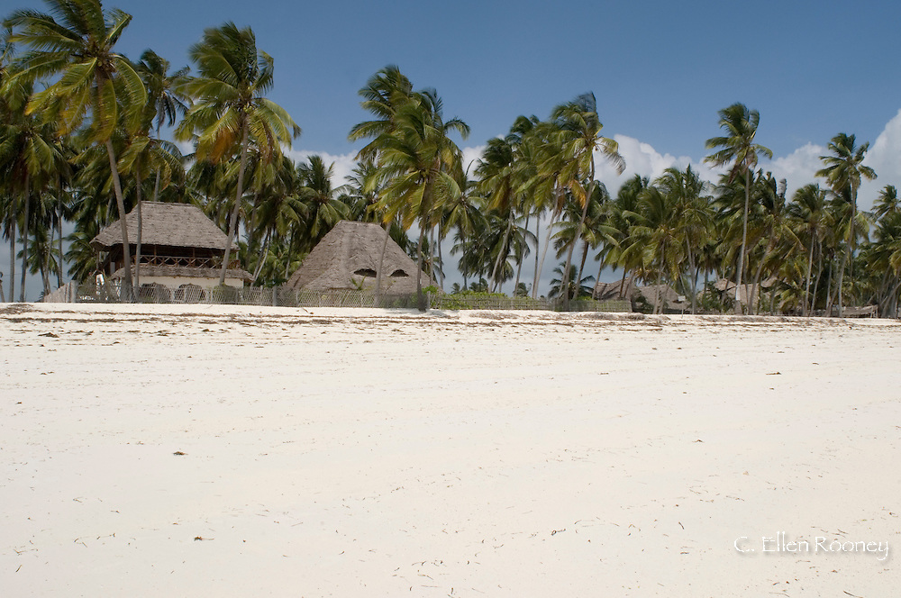 A beachfront hotel designed with African style thatched buildings.  Jambiani, Zanaibar, Tanzania