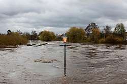 © Licensed to London News Pictures. 19/11/2015. Cawood UK. Picture shows a lamp post sticking out of the flood water in Cawood after the River Ouse  water level reached 6.61 metres this morning. The Environment Agency has issued 12 flood alerts for Yorkshire with more flooding expected. Photo credit: Andrew McCaren/LNP