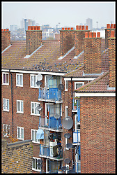 Building Homes in SouTH London, United Kingdom. Monday, 25th November 2013. Picture by Andrew Parsons / i-Images