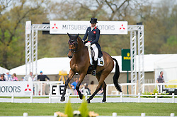 Bullimore Sarah, (GBR), Reve Du Rouet<br /> CCI4* - Mitsubishi Motors Badminton Horse Trials 2016<br /> © Hippo Foto - Jon Stroud<br /> 06/05/16