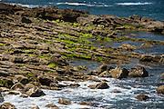 Stones with moss on a beach near Lastres village, Asturias, Spain
