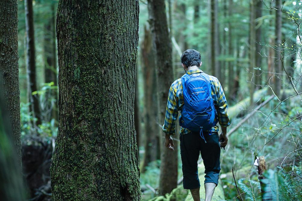 Man hiking the Oregon Coast Trail. Oswald West State Park, OR.