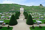 Schloss Wackerbarth, Barockgarten, Weinberge, Radebeul, Sachsen, Deutschland.|.Wackerbarth Castle, baroque garden, vineyards, Radebeul, Saxony, Germany.