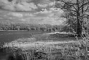 Caddo Lake in Deep Northeast Texas near Uncertain, Texas