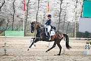 Romee van Paassen - Wup<br /> CDI Zeeland 2015<br /> &copy; DigiShots