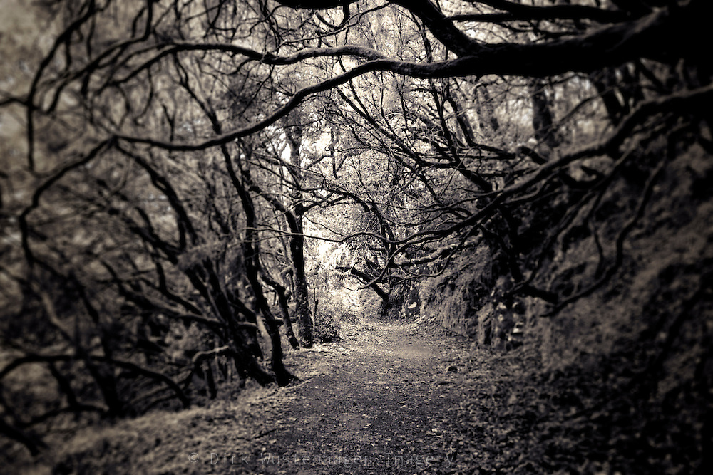 Hike on the island of Madeira, Portugal.<br />
