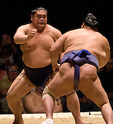 Tochinonada (left) and Tosanoumi compete in the first round of Day 1 of Grand Sumo Tournament Los Angeles 2008, Los Angeles Sports Arena, Los Angeles, California