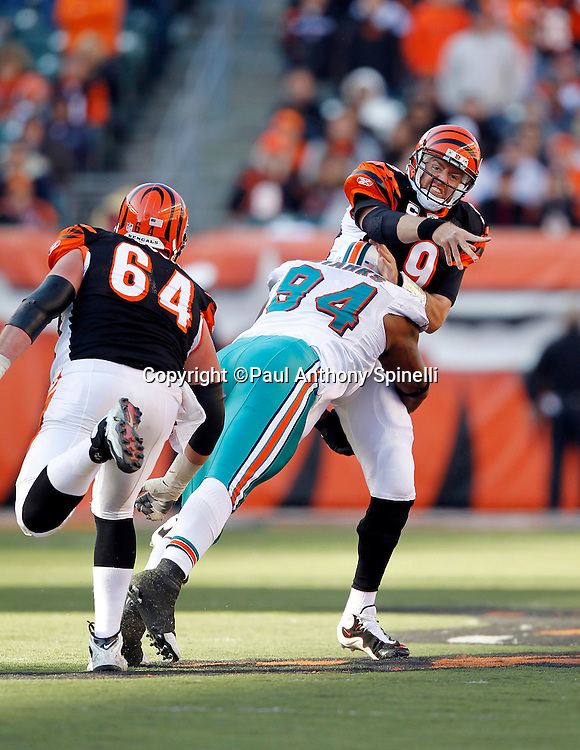 Cincinnati Bengals quarterback Carson Palmer (9) gets hit by Miami Dolphins defensive end Randy Starks (94) during the NFL week 8 football game on Sunday, October 31, 2010 in Cincinnati, Ohio. The Dolphins won the game 22-14. (©Paul Anthony Spinelli)