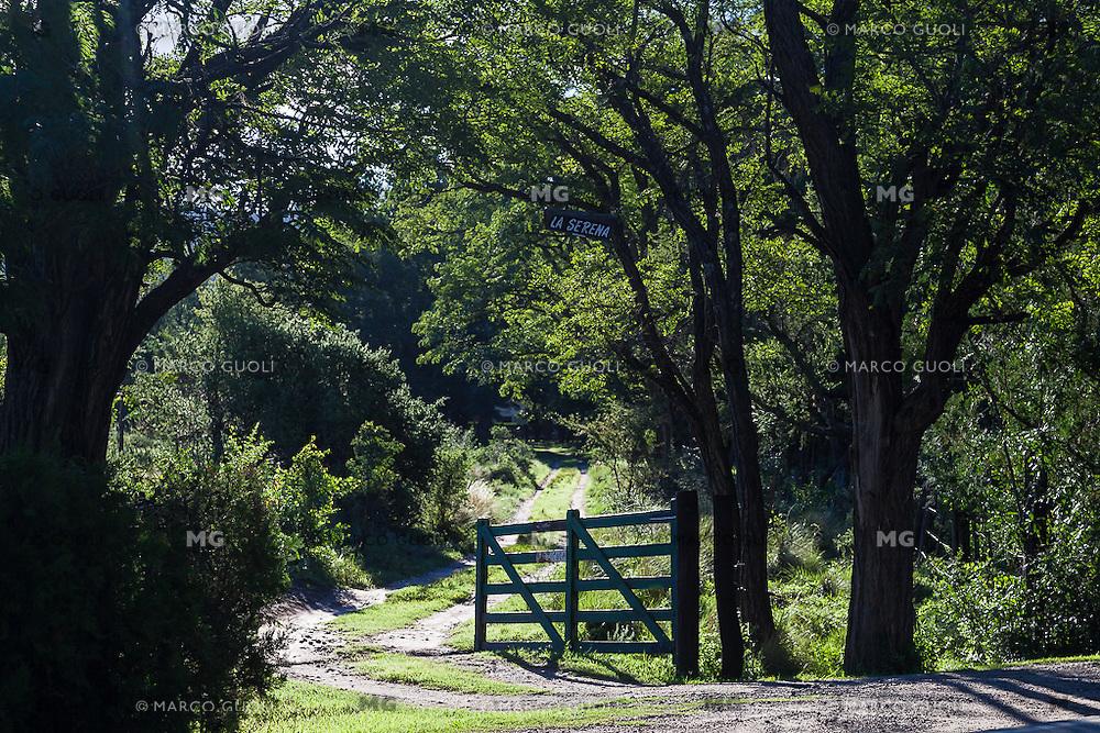 TRANQUERA Y ARBOLES EN CONTRALUZ EN LA ENTRADA DE UNA ESTANCIA, NONO, TRASLASIERRA, PROVINCIA DE CORDOBA, ARGENTINA (PHOTO © MARCO GUOLI - ALL RIGHTS RESERVED)