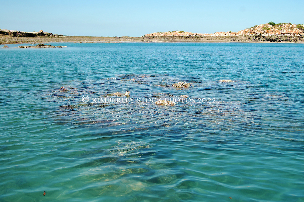 A coral bombie rises from the water at low tide near Wailgwin Island.  The Kimberley has the greatest diversity of coral species of any area in Western Australia.