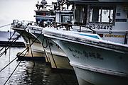 Fishing boats, Toyo-ura, Hokkaido