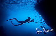 Silhouette of a diver swimming with an underwater camera near a large school of fish.