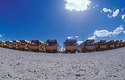 Row of busses, USA 2005
