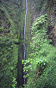 Kapaloa Falls, Kohala Ditch Trail, Island of Hawaii<br />