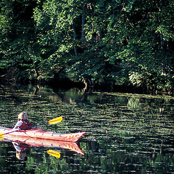 Hampton, NH.Kayaking on the Taylor River where it flows through the Hurd Farm in Hampton, New Hampshire.