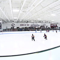 Women's Ice Hockey: Augsburg University Auggies vs. Williams College Ephs