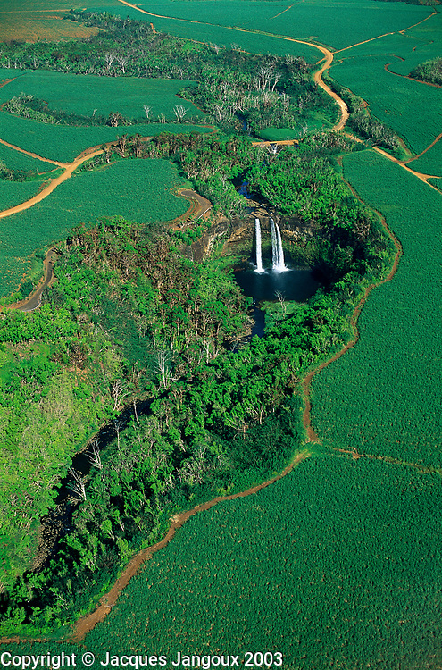 Aerial view of Wailua Falls among sugar cane fields, Kauai, Hawaii, USA.