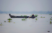 A fisherman brings in a net on the Mekong Delta in Vietnam on a foggy morning.