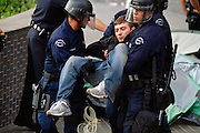 An Occupy LA demonstrator is arrested for trespassing and carried away by Los Angeles police at Bank of America plaza in Los Angeles, Calif. on Thursday, November 17, 2011. (Photo by Gabriel Romero ©2011)