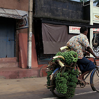 Sri Lanka, Colombo, Bicyclist peddles through streets of small coastal town
