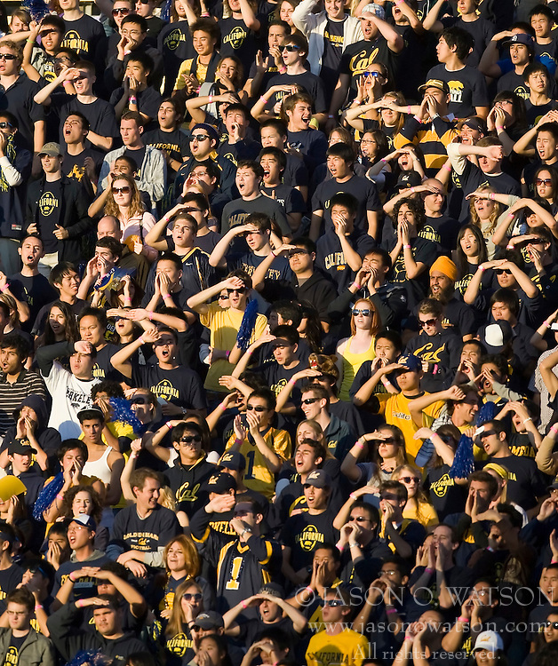 November 7, 2009; Berkeley, CA, USA;  California Golden Bears students cheer during the first quarter against the Oregon State Beavers at Memorial Stadium. Oregon State defeated California 31-14.
