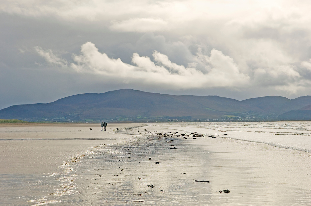 Inch Strand, County Kerry, Ireland.  Man woman and dog on beach with the mountains of the Ring of Kerry behind. Rainy day.