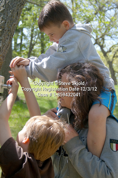 Mom and two sons working together bolting tree house to a tree. Clitherall Minnesota MN USA