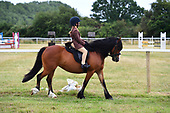 Class 34 - Pony the Judge would take home