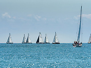 Over 300 sailboats pass by Chicago's Navy Pier as they head to the start of the 109th annual Chicago Yacht Club Chicago-to-Mackinac sailboat race