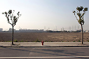 A fire hydrant is positioned between two newly planted trees, near a field that will be the site of future high rise apartments in Shanghai.