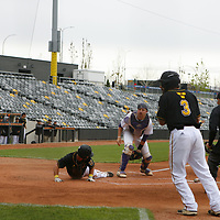 Baseball: Gustavus Adolphus College Gusties vs. University of St. Thomas (Minnesota) Tommies
