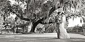 Kelly and Manuel, Palmetto Bluff Wedding Weekend