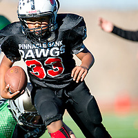 11031313    Brian Leddy<br /> Gallup Bulldog Isaac Alvarado gains yardage during Saturday's game against Farmington at Public School Stadium.