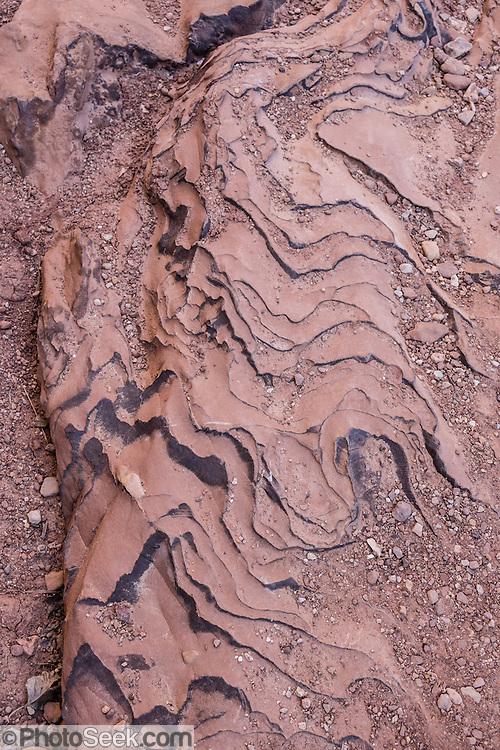 Swirling sandstone rock pattern, Capitol Gorge, Capitol Reef National Park, Utah, USA.